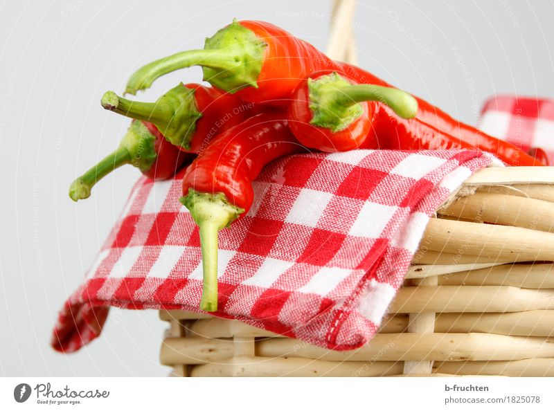Sharp harvest Food Vegetable Herbs and spices Fresh Healthy Natural Red Quality Chili Chili harvest Tangy Husk Napkin Checkered Spicy Basket Shopping