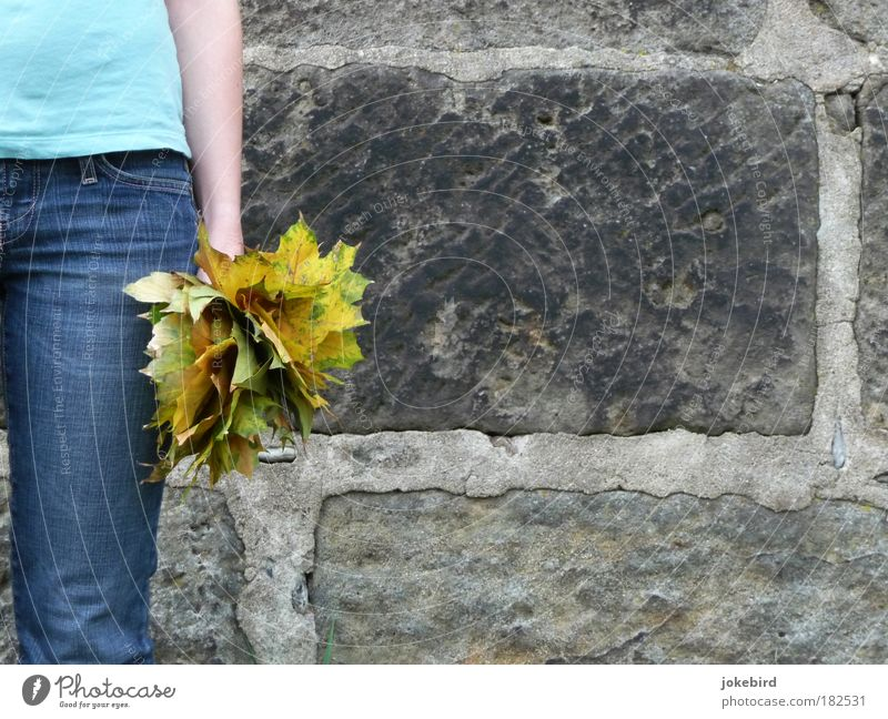 autumn bouquet Human being Feminine Autumn Leaf Wall (barrier) Wall (building) T-shirt Jeans Stone Stand Dry Blue Yellow Sandstone Autumn leaves Arm Legs