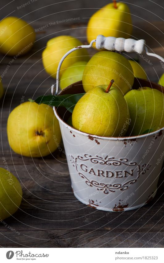 Ripe yellow pears in a metal bucket on a wooden table Nature Old Colour Summer Green Yellow Eating Autumn Natural Wood Food Health care Fruit Nutrition Fresh