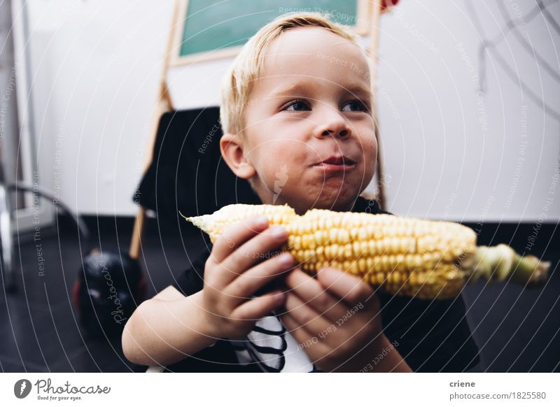 Caucasian Toddler eating Corn Cob Human being Child Joy Eating Autumn Lifestyle Boy (child) Food Blonde Infancy Smiling Mouth Vegetable Home Kindergarten