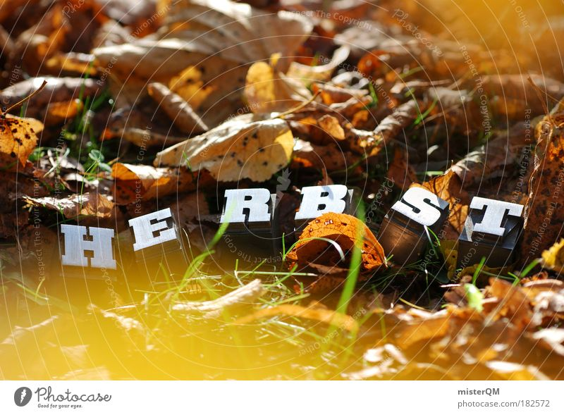 Nature Autumn Art Park Weather Contentment Wind Climate Characters Esthetic Ground To go for a walk Letters (alphabet) Beautiful weather Creativity Hide
