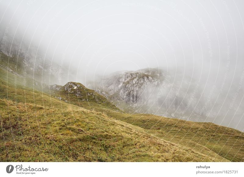 rocky mountains in dense fog, Alps, Germany Nature Vacation & Travel Landscape Mountain Meadow Autumn Stone Rock Wild Weather Fog Hiking Vantage point Europe