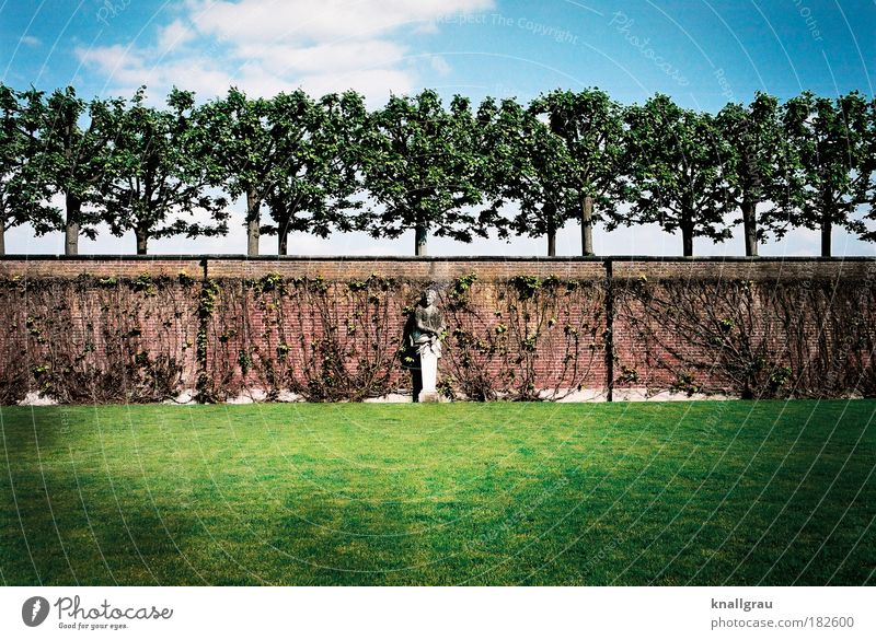 Tree Green Plant Summer Vacation & Travel Loneliness Relaxation Garden Dream Hannover Wall (barrier) Park Art Arrangement Lawn Break