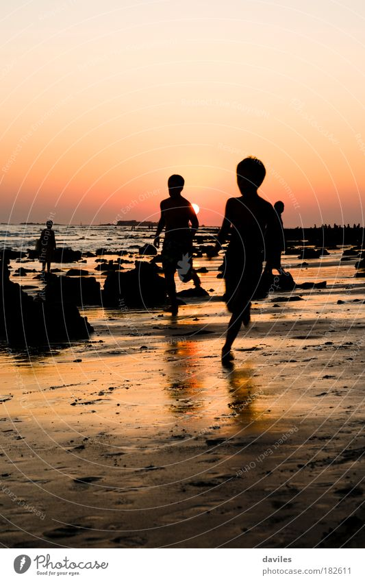 Colour photo Exterior shot Evening Light Shadow Silhouette Sunlight Front view Life Children's game Vacation & Travel Tourism Freedom Summer vacation Beach