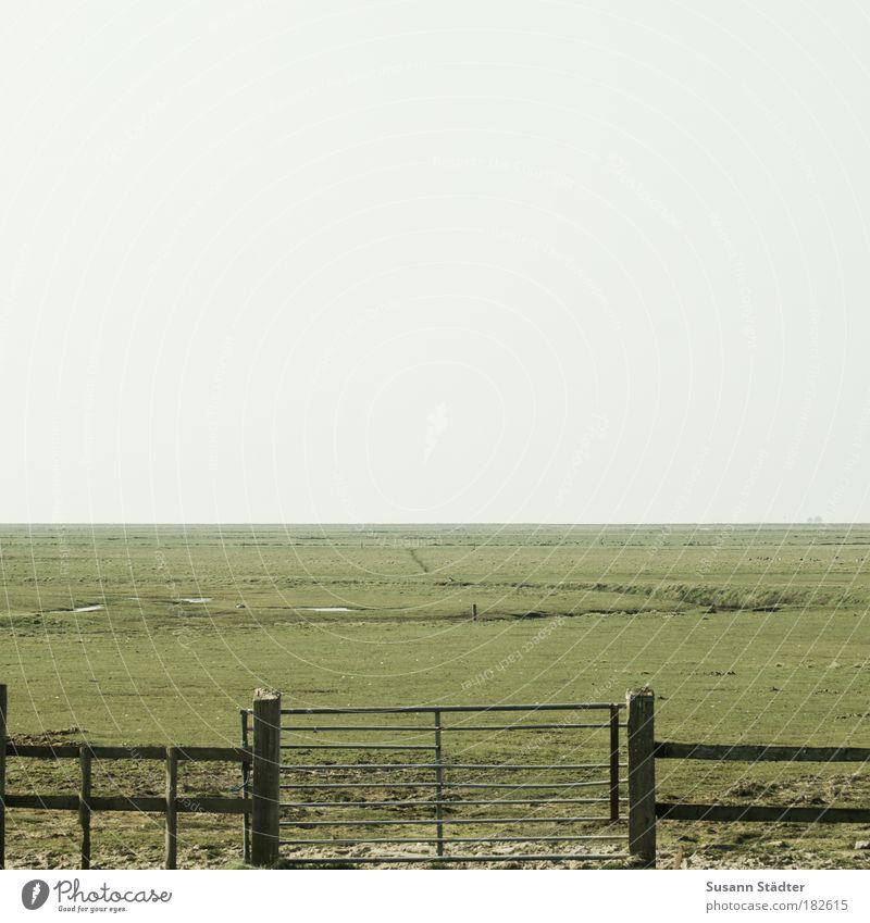 Sky Plant Meadow Garden Wood Dream Park Landscape Field Horizon Island Climate Desert Village Fence Agriculture