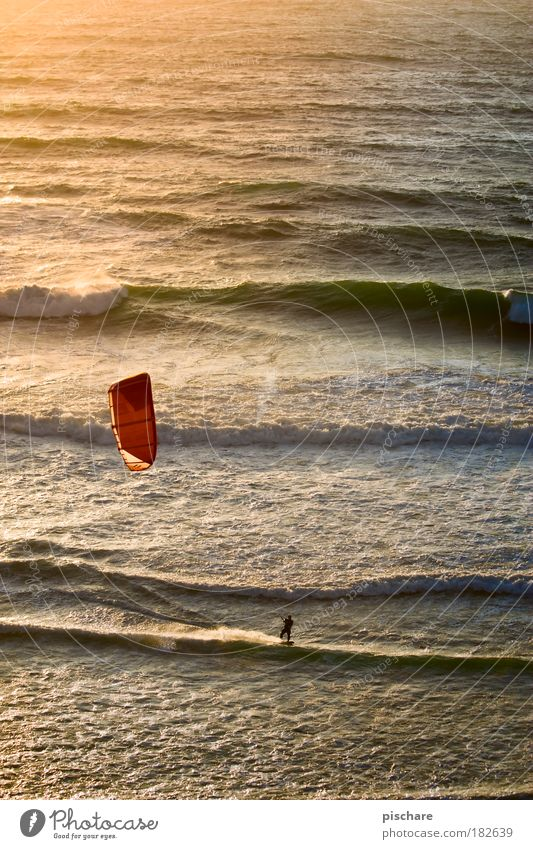 sunset surf Kiting Waves Ocean Sunset Surfing Sail Summer Sports pischarean Wind Warmth Vacation & Travel Bird's-eye view Portugal Kite