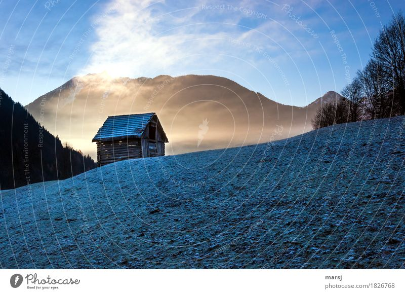 Cold-Warm Nature Autumn Beautiful weather Fog Ice Frost Meadow Hut haystack Old Exceptional Dark cold-warm morningfrost Colour photo Subdued colour