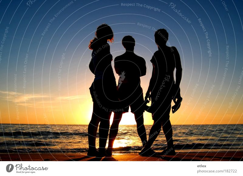 In the shadows Colour photo Exterior shot Copy Space left Copy Space right Evening Twilight Shadow Contrast Sunrise Sunset Full-length Vacation & Travel