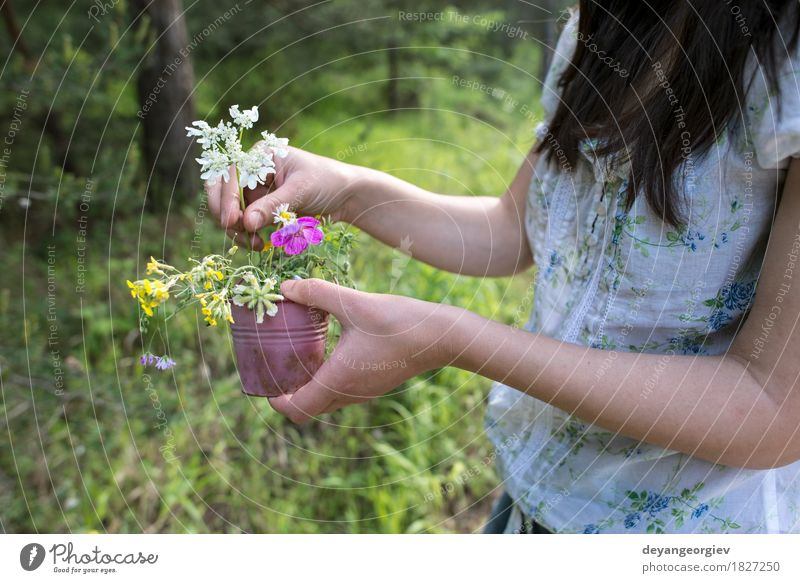 Woman collects flowers Beautiful Summer Garden Gardening Girl Adults Nature Plant Flower Grass Meadow Dress Hair Bouquet Cute Wild Green young collecting spring