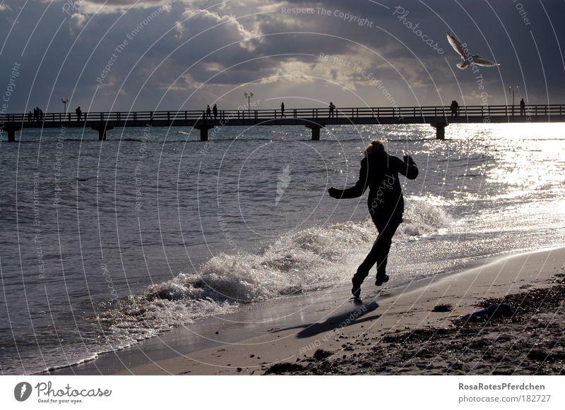 Sky Ocean Beach Vacation & Travel Clouds Dark Freedom Stone Sand Bird Waves Running Happiness Bridge Water