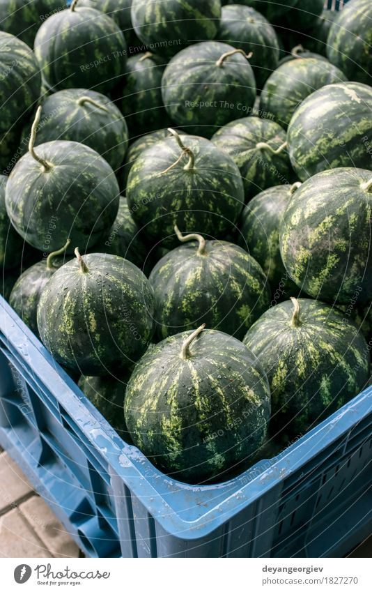 Watermelons in a a large crate Fruit Dessert Nutrition Diet Summer Nature Fresh Delicious Natural Juicy Green Red Water melon market watermelons background