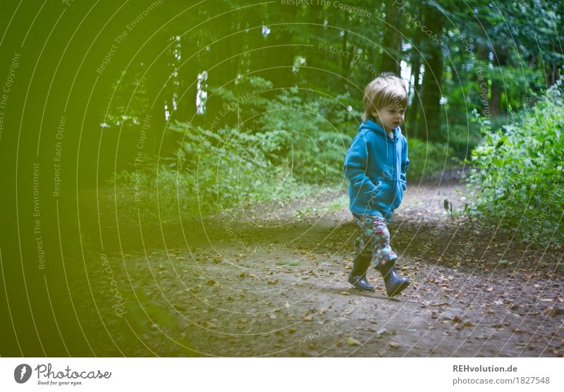 On the road in the forest Human being Child Toddler Boy (child) Infancy 1 1 - 3 years Environment Nature Tree Forest Lanes & trails Sweater Rubber boots Running