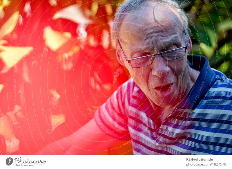 Human being Nature Man Old Summer Red Face Adults Environment To talk Emotions Senior citizen Garden Head Moody Masculine