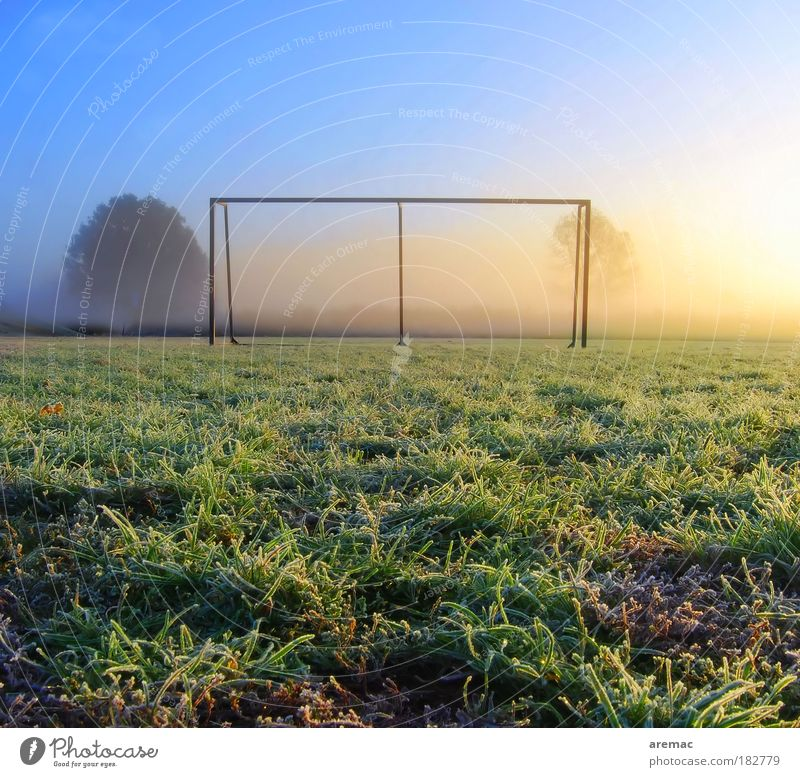 Nature Blue Green Meadow Autumn Landscape Sports Playing Grass Ice Morning Field Leisure and hobbies Frost Sunrise Back-light
