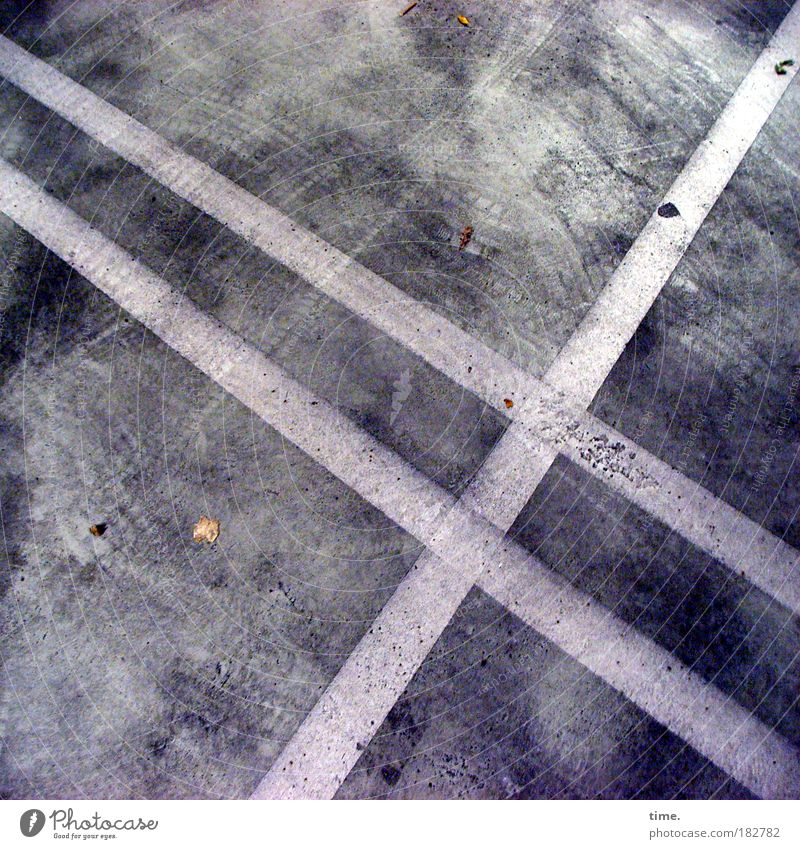 cellar spirits Parking garage Concrete Floor covering Stripe Clue Traffic lane landmarks Leaf Autumn Underground garage Dirty smudged Corner Parallel