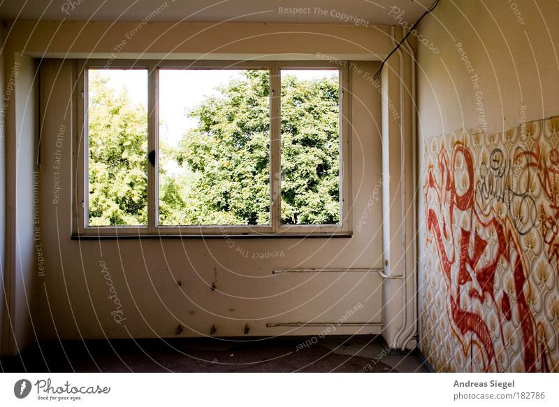 Tree House (Residential Structure) Window Wall (building) Graffiti Architecture Building Wall (barrier) Bright Room Flat (apartment) Interior design Empty Broken Authentic Exceptional