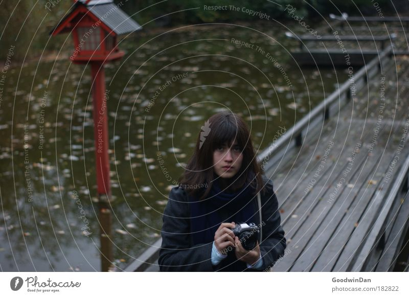 beginning of autumn Feminine 1 Human being 18 - 30 years Youth (Young adults) Adults Nature Water Autumn Park Coat Brunette Bangs Colour photo Exterior shot