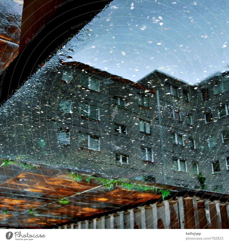Water City Berlin Wall (building) Window Stone Wall (barrier) Rain Concrete Facade Gloomy Living or residing GDR Puddle Prefab construction Reflection