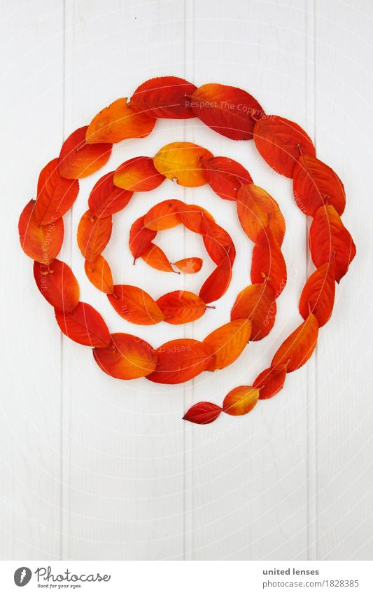 AK# Autumn and its leaves II Art Work of art Esthetic Circle Circular Circular movement Spiral Red Orange White Symmetry Graphic Whirlpool Autumnal