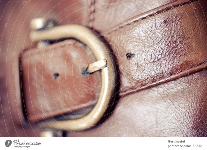 Old buckle Colour photo Light Shadow Reflection Shallow depth of field Elegant Style Design Fashion Clothing Leather Buckle Leather shoes Gold Footwear Boots