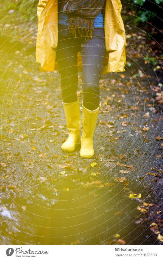 Human being Nature Youth (Young adults) Young woman Landscape Joy Forest 18 - 30 years Adults Environment Yellow Autumn Legs Feminine Exceptional Rain