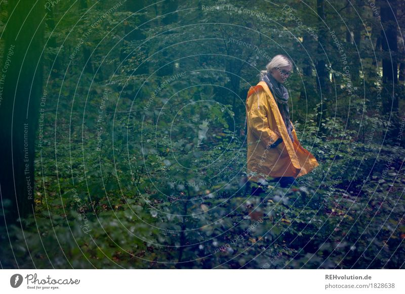 Julia in a raincoat. Human being Feminine Young woman Youth (Young adults) 1 18 - 30 years Adults Environment Nature Landscape Autumn Plant Tree Forest