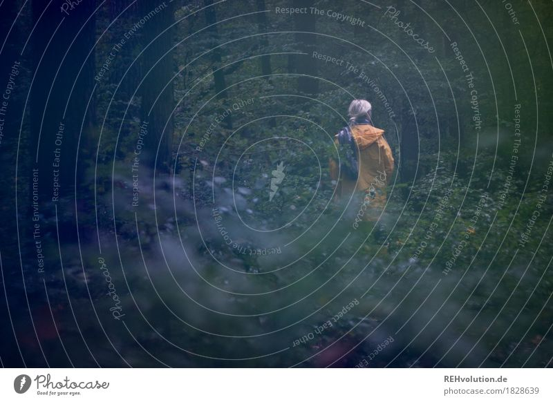 Jule, alone in the woods. Human being Feminine Back 1 18 - 30 years Youth (Young adults) Adults Environment Nature Landscape Autumn Weather Bad weather Plant