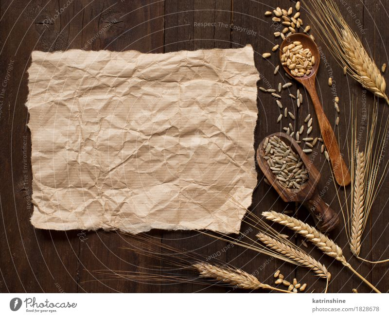 Wheat and spelt background Nature Plant Summer Yellow Natural Wood Brown Growth Fresh Paper Beauty Photography Farm Harvest Grain Agriculture Meal