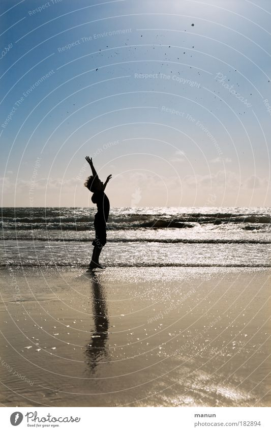 Child Sky Nature Youth (Young adults) Sun Ocean Joy Summer Beach Autumn Life Landscape Freedom Boy (child) Happy Sand
