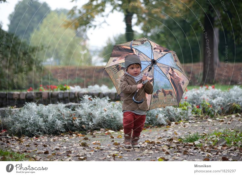 Umbrella and you Leisure and hobbies Playing Child Toddler Boy (child) Infancy Life 1 Human being 1 - 3 years Beautiful Autumn Autumnal Autumn leaves October