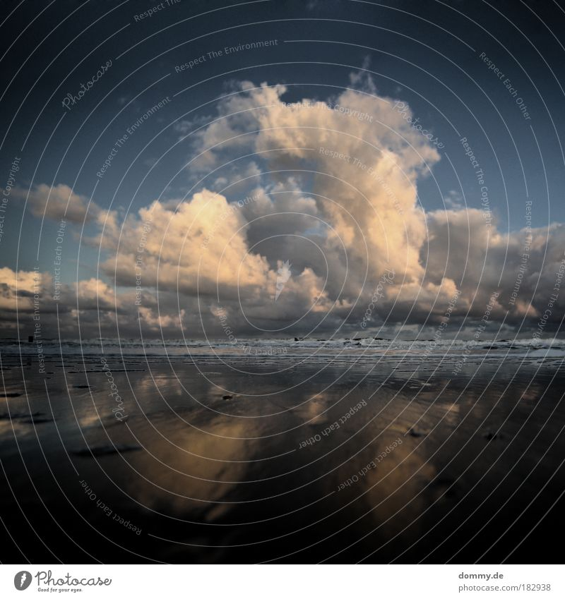 mushroom Colour photo Subdued colour Exterior shot Deserted Dawn Shadow Contrast Reflection Long shot Wide angle Nature Landscape Water Clouds Waves Coast