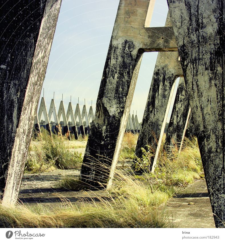 Old Green Loneliness Yellow Grass Wall (barrier) Gray Think Concrete Threat Broken Might Touch Protection Derelict Firm