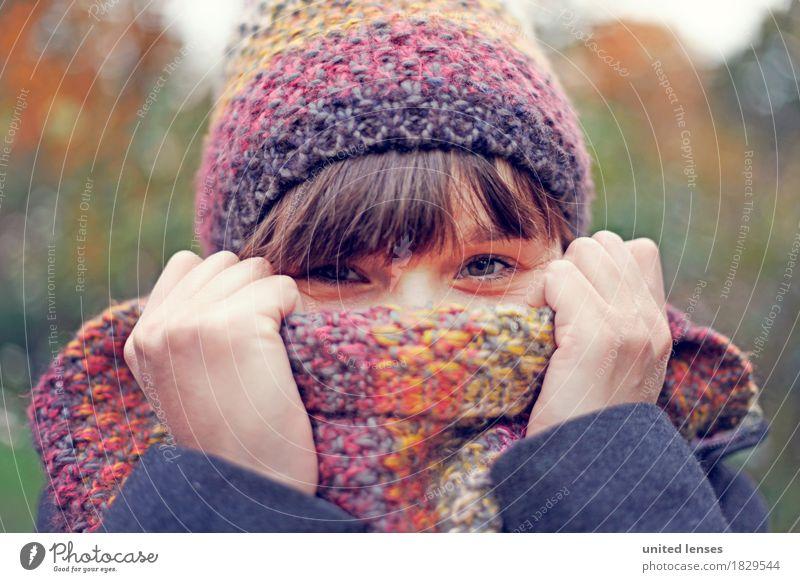 AKDR# Autumn weather I Climate Bad weather Esthetic Autumnal Autumn leaves Autumnal colours Early fall Autumnal weather Automn wood Autumn storm Autumn wind
