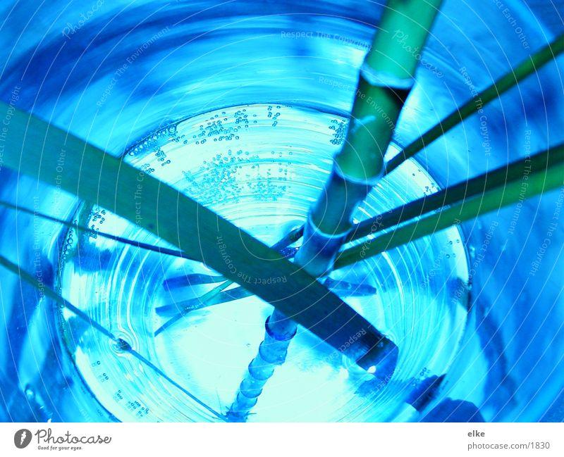 bamboo blue-green Plant Green Bamboo stick Blue Water Glass