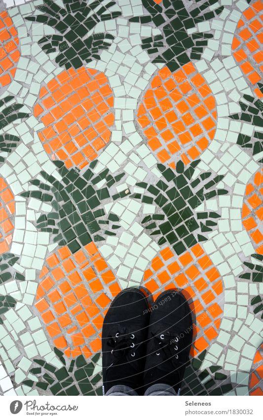 Life Healthy Food Feet Fruit Nutrition Footwear Vegetarian diet Diet Mosaic Pineapple Ananas leaves