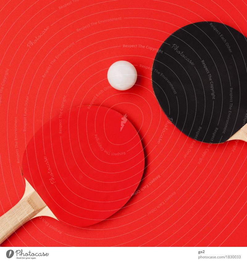 table tennis Athletic Leisure and hobbies Playing Sports Ball sports Table tennis Sporting event Table tennis ball Table tennis bat Round Red Black White