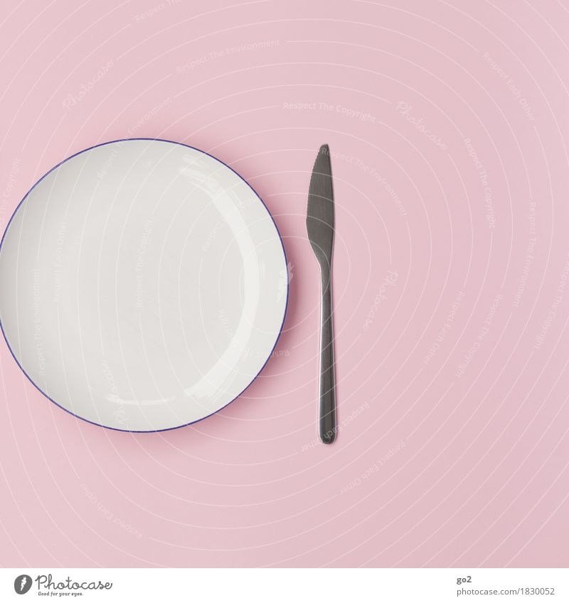 White Pink Nutrition Esthetic Empty Crockery Plate Knives Diet Cutlery Thrifty