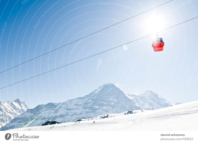 Blue White Sun Winter Mountain Movement Tourism Perspective Uniqueness Target Alps Switzerland Beautiful weather Upward Ease Snow