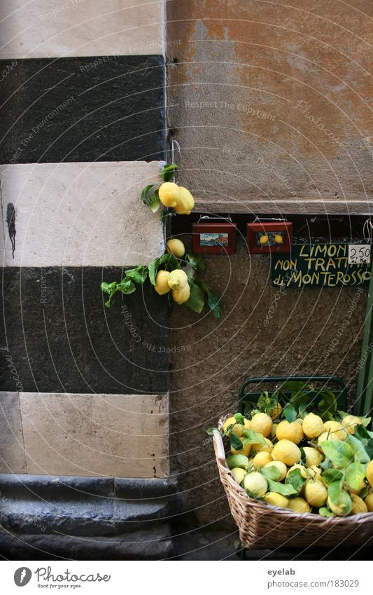 Nature Old Plant House (Residential Structure) Yellow Wall (building) Architecture Building Wall (barrier) Healthy Fruit Facade Places Fresh Church