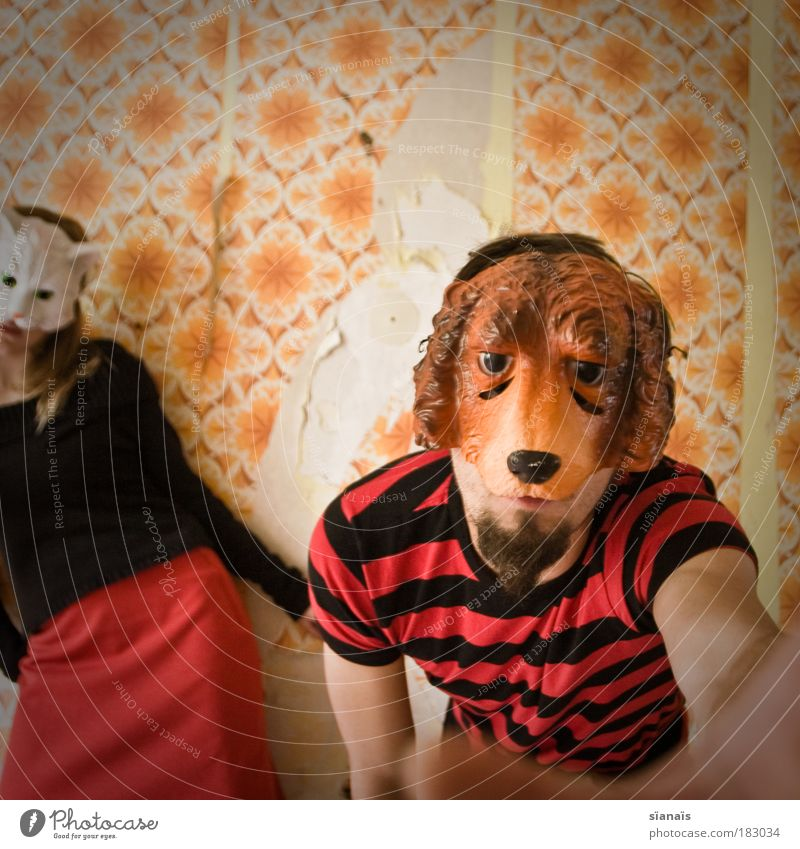 Cat Human being Dog Couple Funny Orange Dance Fear Masculine Crazy Action Broken Retro Protection Mask Carnival