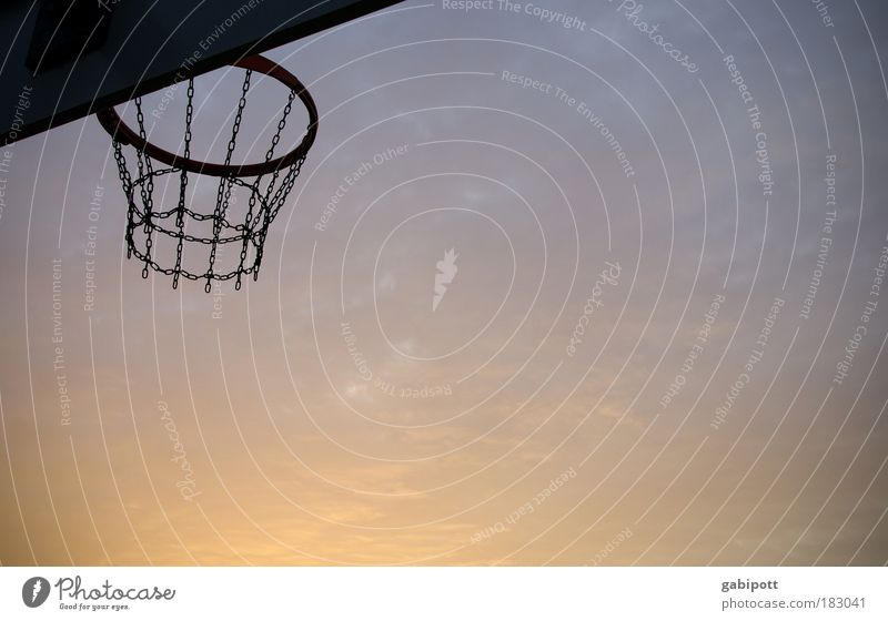 The big litter Subdued colour Exterior shot Deserted Evening Twilight Silhouette Sunrise Sunset Back-light Worm's-eye view Leisure and hobbies Basketball