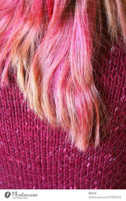 dip dye Human being Feminine Young woman Youth (Young adults) Woman Adults Hair and hairstyles 1 Sweater Long-haired Pink Self-confident Cool (slang) Uniqueness