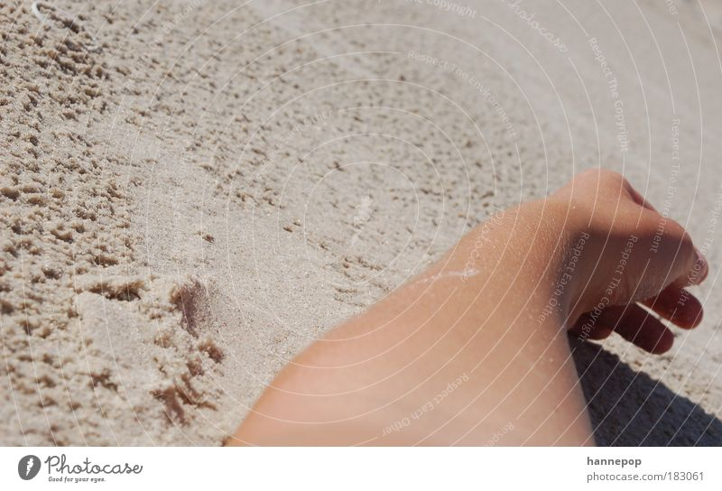 Hand Sun Summer Beach Calm Contentment Arm Lie