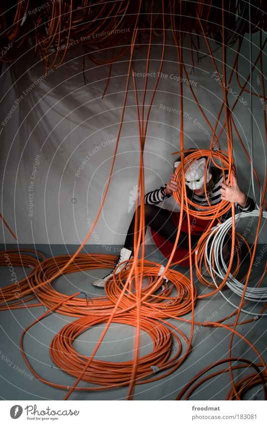cable meauus Colour photo Multicoloured Interior shot Copy Space left Evening Night Long exposure Animal portrait Full-length Downward Human being Woman Adults
