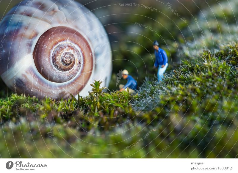 Miniwelten - Anyone home? Human being Masculine Man Adults 2 Plant Grass Animal Snail 1 Blue Green Snail shell Spiral House (Residential Structure) Visitor