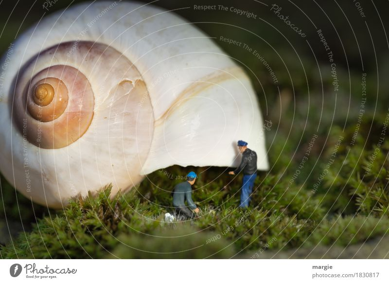 Miniwelten - House Building II Profession Craftsperson Workplace Construction site Human being Masculine Man Adults 2 Plant Grass Moss Meadow Animal Snail 1