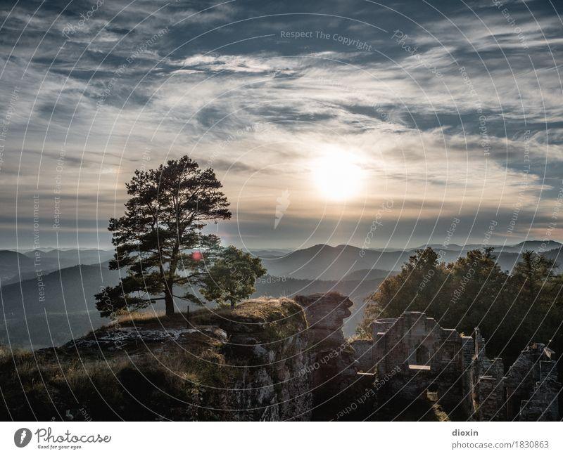 promising [1] Trip Far-off places Environment Landscape Plant Sky Clouds Sun Sunrise Sunset Sunlight Tree Forest Mountain Palatinate forest Castle Ruin Nature