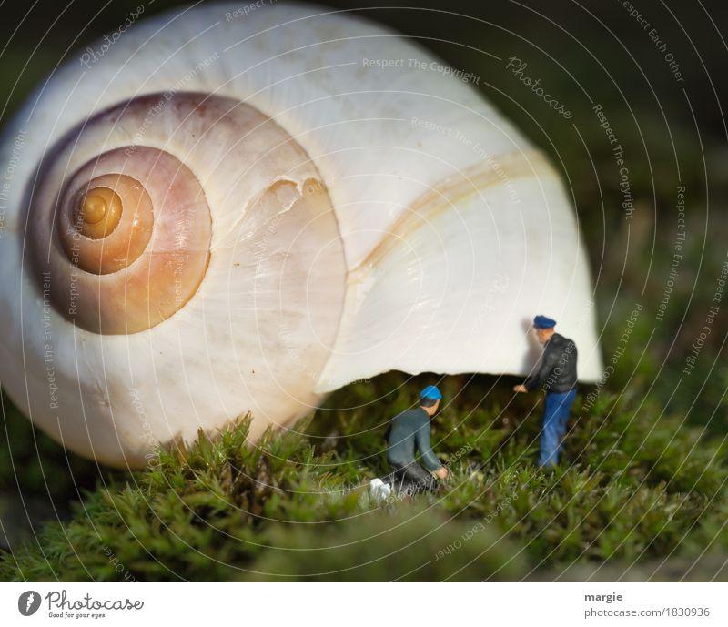 Miniwelten - House Building II Craftsperson Workplace Construction site Human being Masculine Man Adults 2 Plant Grass Moss Snail Yellow Green Snail shell