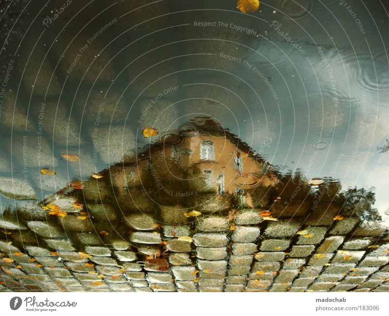 Water House (Residential Structure) Loneliness Street Sadness Lanes & trails Building Rain Architecture Road traffic Weather Environment Drops of water