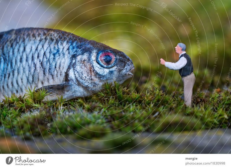 Miniwelten - Listen to me carefully.... Food Fish Fishing (Angle) Human being Masculine Man Adults 1 Nature Plant Grass Animal Blue Green Fisheye Scales Speech